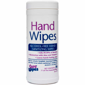2 Xl Corporation 2XL CareWipes Alcohol Free Hand Sanitizing Wipes, 70 Wipes/Can, 6 Cans/Case – 2XL-470